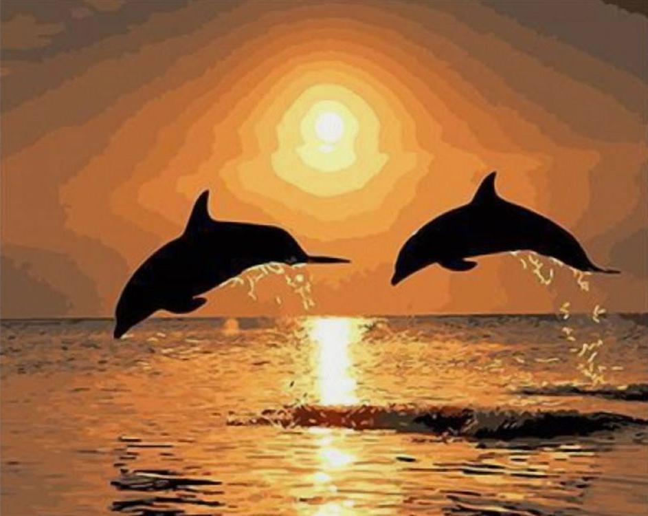 Картина по номерам «Дельфины на закате»Paintboy (Premium)<br><br><br>Артикул: GX4496<br>Основа: Холст<br>Сложность: сложные<br>Размер: 40x50 см<br>Количество цветов: 25<br>Техника рисования: Без смешивания красок