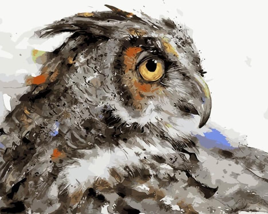 Картина по номерам «Мудрая сова» Дина КрузераРаскраски по номерам<br><br>