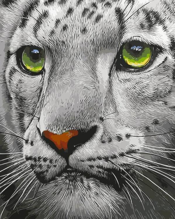 Картина по номерам «Белый тигр»Цветной (Premium)<br><br><br>Артикул: ME1072_Z<br>Основа: Холст<br>Сложность: средние<br>Размер: 30x40 см<br>Количество цветов: 25<br>Техника рисования: Без смешивания красок
