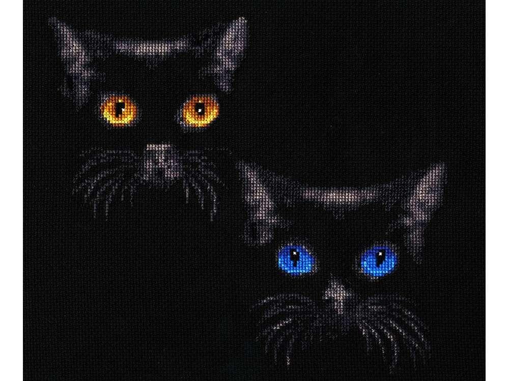 Набор для вышивания «Сияние глаз»Вышивка крестом Золотое Руно<br><br><br>Артикул: С-011<br>Основа: канва Aida 14<br>Размер: 21,5x24,5 см<br>Техника вышивки: счетный крест<br>Тип схемы вышивки: Черно-белая схема<br>Цвет канвы: Черный<br>Количество цветов: 11<br>Заполнение: Частичное<br>Рисунок на канве: не нанесён<br>Техника: Вышивка крестом