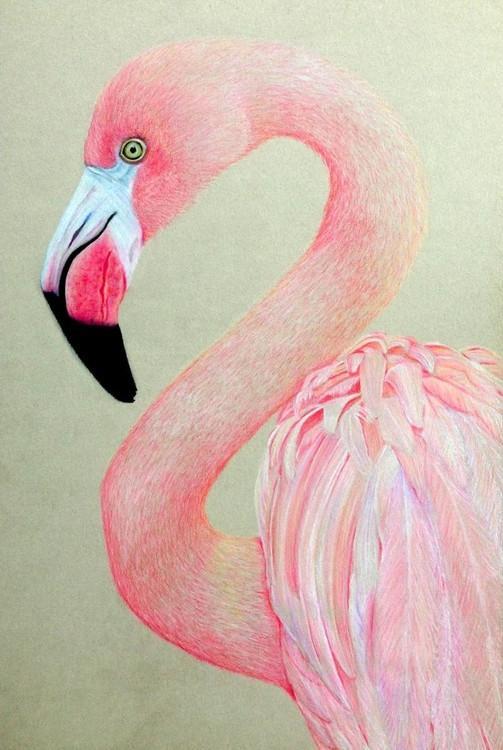 Алмазная вышивка «Розовый фламинго»Алмазная вышивка Гранни<br><br><br>Артикул: Ag2239<br>Основа: Холст без подрамника<br>Сложность: средние<br>Размер: 27х38 см<br>Выкладка: Полная<br>Количество цветов: 23<br>Тип страз: Квадратные