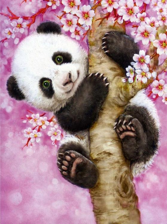 Алмазная вышивка «Ласковая панда» Кайоми ХарайАлмазная вышивка Гранни<br><br><br>Артикул: Ag3434<br>Основа: Холст без подрамника<br>Сложность: сложные<br>Размер: 27х38 см<br>Выкладка: Полная<br>Количество цветов: 32<br>Тип страз: Квадратные