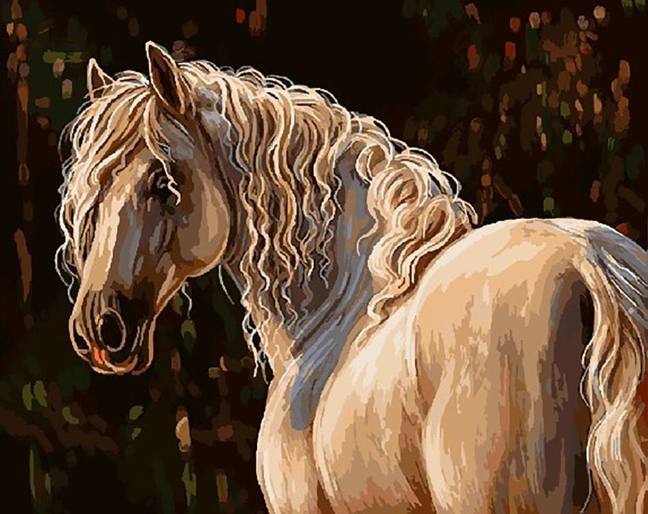 Картина по номерам «Савраска лошадь»Раскраски по номерам Color Kit<br><br><br>Артикул: CG731<br>Основа: Холст<br>Сложность: сложные<br>Размер: 40x50 см<br>Количество цветов: 25<br>Техника рисования: Без смешивания красок
