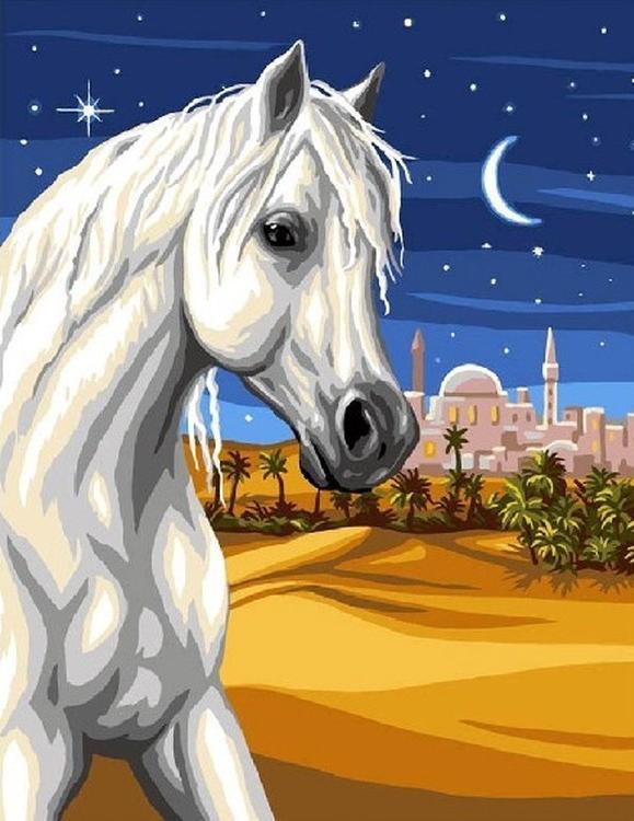 «Арабский скакун»Раскраски по номерам Color Kit<br><br><br>Артикул: CG760<br>Основа: Холст<br>Сложность: средние<br>Размер: 40x50 см<br>Количество цветов: 21<br>Техника рисования: Без смешивания красок