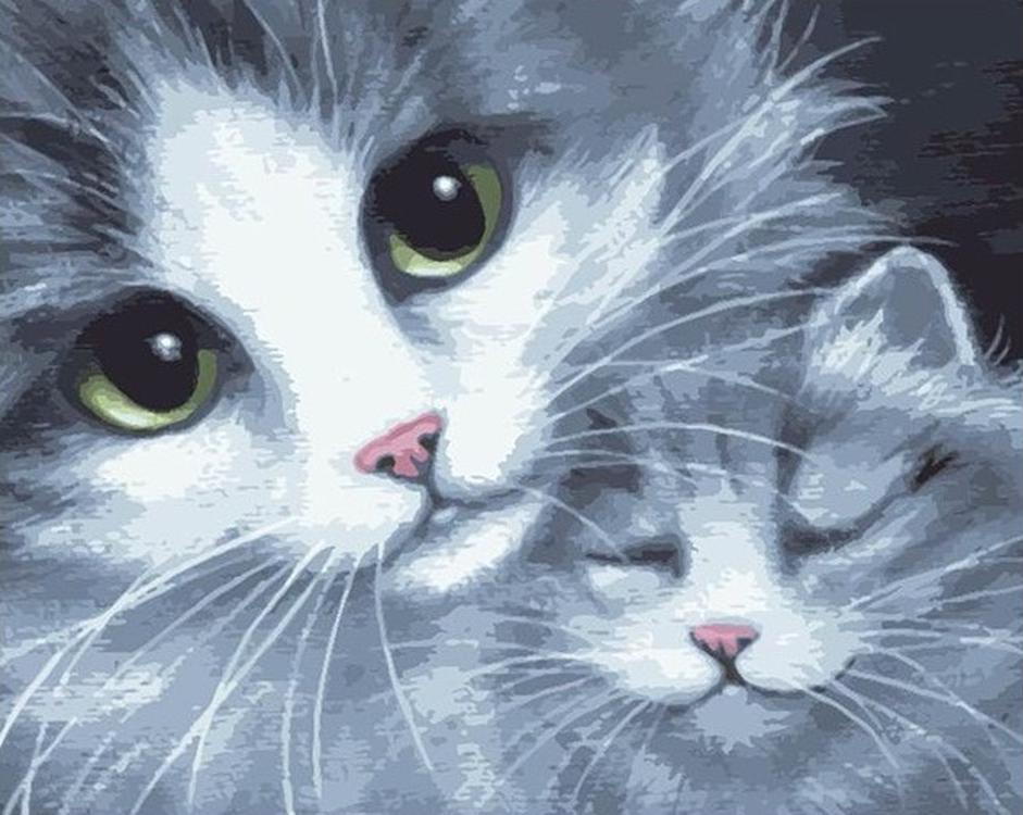 «Кошка с котенком»Раскраски по номерам Color Kit<br><br><br>Артикул: CG772<br>Основа: Холст<br>Сложность: средние<br>Размер: 40x50 см<br>Количество цветов: 23<br>Техника рисования: Без смешивания красок