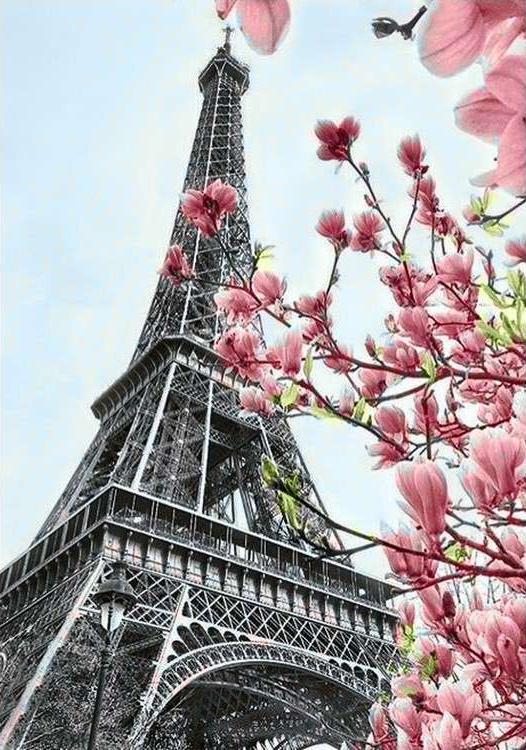Алмазная вышивка «Символ Парижа»Алмазная вышивка Гранни<br><br><br>Артикул: Ag055<br>Основа: Холст без подрамника<br>Сложность: средние<br>Размер: 19x27 см<br>Выкладка: Полная<br>Количество цветов: 25