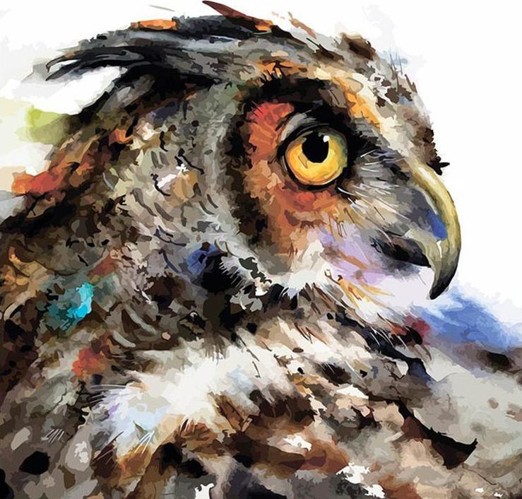 Картина по номерам «Мудрая сова»Раскраски по номерам Color Kit<br><br><br>Артикул: CF120<br>Основа: Холст<br>Сложность: сложные<br>Размер: 40x40 см<br>Количество цветов: 34<br>Техника рисования: Без смешивания красок