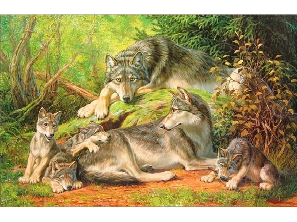 Картина по номерам «Волчья семья» Татьяны ДанчуровойPaintboy (Premium)<br><br><br>Артикул: GX5565<br>Основа: Холст<br>Сложность: сложные<br>Размер: 40x50 см<br>Количество цветов: 20-25<br>Техника рисования: Без смешивания красок
