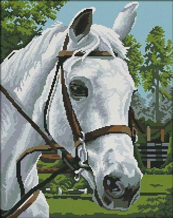 Алмазная вышивка «Белая лошадь»Алмазная вышивка Painting Diamond<br><br><br>Артикул: GF1147<br>Основа: Холст на подрамнике<br>Сложность: сложные<br>Размер: 40x50 см<br>Выкладка: Полная<br>Количество цветов: 20