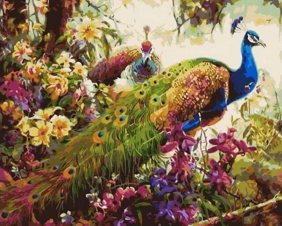 Картина по номерам «Павлины в цветущем лесу»Цветной (Premium)<br><br><br>Артикул: MG6008_Z<br>Основа: Холст<br>Сложность: сложные<br>Размер: 40x50 см<br>Количество цветов: 24<br>Техника рисования: Без смешивания красок