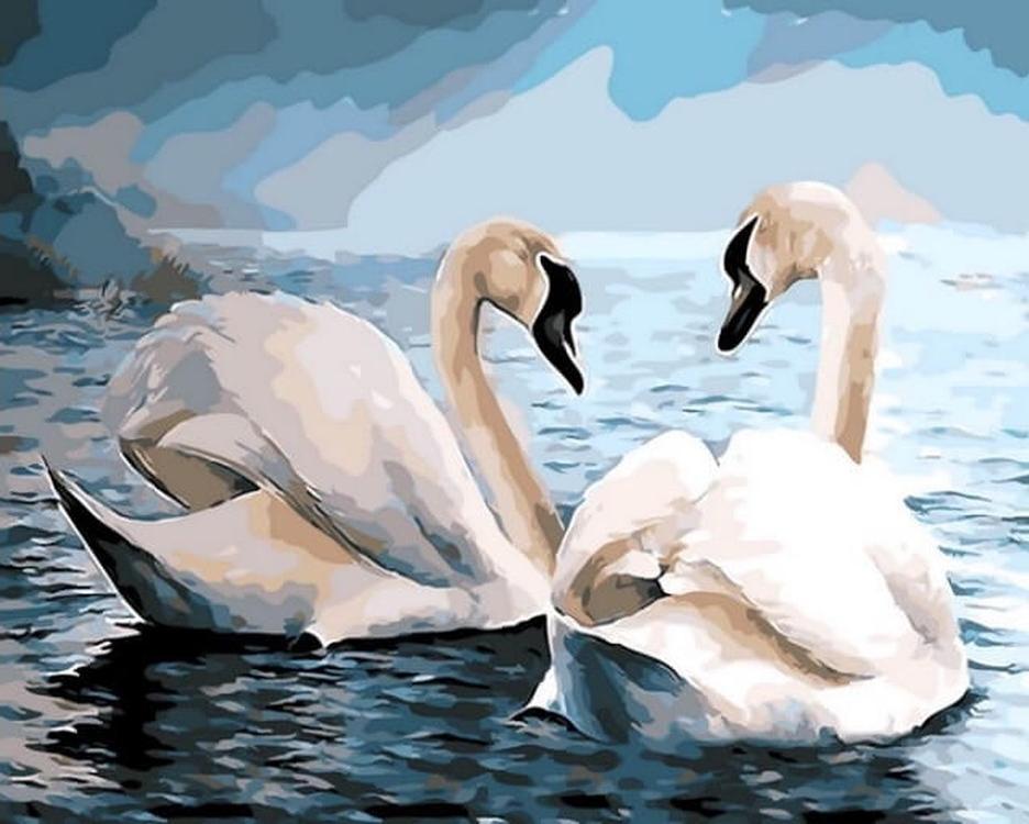 Картина по номерам «Лебеди»Цветной (Premium)<br><br><br>Артикул: MG6019_Z<br>Основа: Холст<br>Сложность: сложные<br>Размер: 40x50 см<br>Количество цветов: 26<br>Техника рисования: Без смешивания красок
