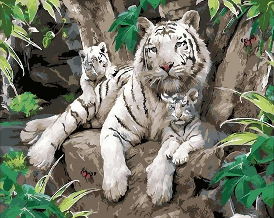 Картина по номерам «Белые тигры»Цветной (Premium)<br><br><br>Артикул: MG6046_Z<br>Основа: Холст<br>Сложность: сложные<br>Размер: 40x50 см<br>Количество цветов: 24<br>Техника рисования: Без смешивания красок