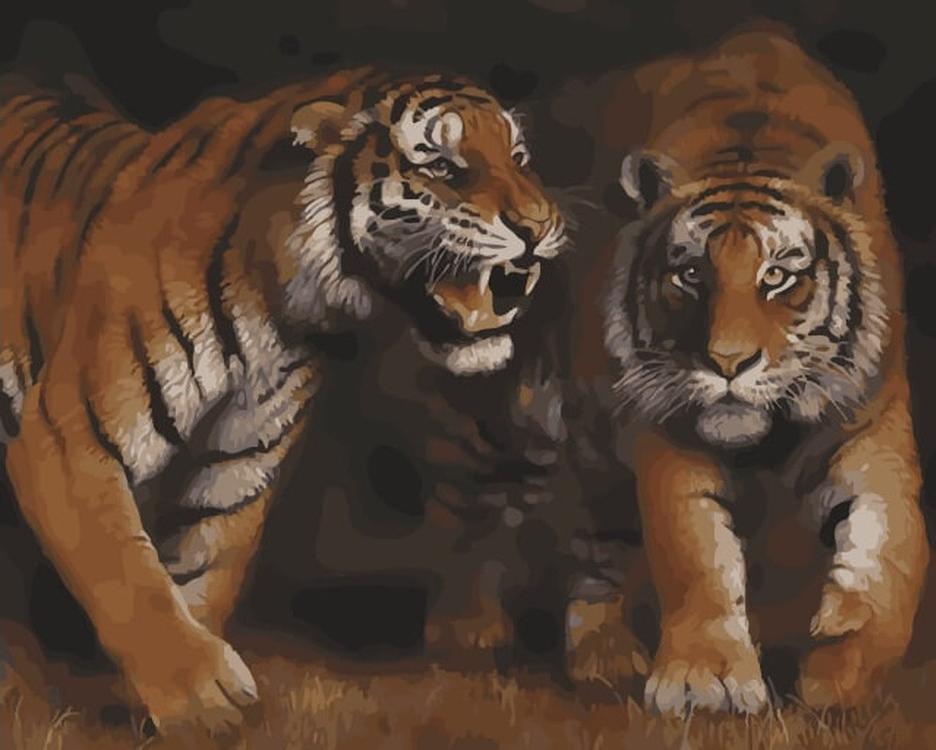 Картина по номерам «Дружба тигра»Цветной (Premium)<br><br><br>Артикул: MG6083_Z<br>Основа: Холст<br>Сложность: сложные<br>Размер: 40x50 см<br>Количество цветов: 26<br>Техника рисования: Без смешивания красок