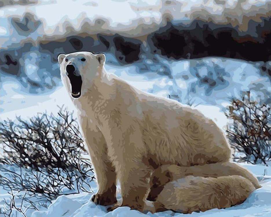 Картина по номерам «Медведица с медвежатами»Цветной (Premium)<br><br><br>Артикул: MG6085_Z<br>Основа: Холст<br>Сложность: сложные<br>Размер: 40x50 см<br>Количество цветов: 27<br>Техника рисования: Без смешивания красок