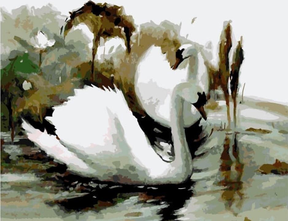Картина по номерам «Пара белых лебедей»Цветной (Premium)<br><br><br>Артикул: MG6088_Z<br>Основа: Холст<br>Сложность: сложные<br>Размер: 40x50 см<br>Количество цветов: 24<br>Техника рисования: Без смешивания красок