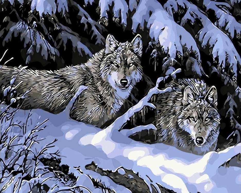 Картина по номерам «Волки в зимнем лесу»Цветной (Premium)<br><br><br>Артикул: MG6123_Z<br>Основа: Холст<br>Сложность: сложные<br>Размер: 40x50 см<br>Количество цветов: 24<br>Техника рисования: Без смешивания красок