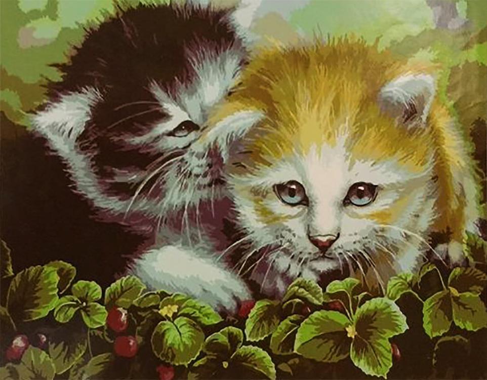 Картина по номерам «Кошачья дружба» Дженни НьюлэндPaintboy (Premium)<br><br><br>Артикул: GX5644<br>Основа: Холст<br>Сложность: средние<br>Размер: 40x50 см<br>Количество цветов: 27<br>Техника рисования: Без смешивания красок