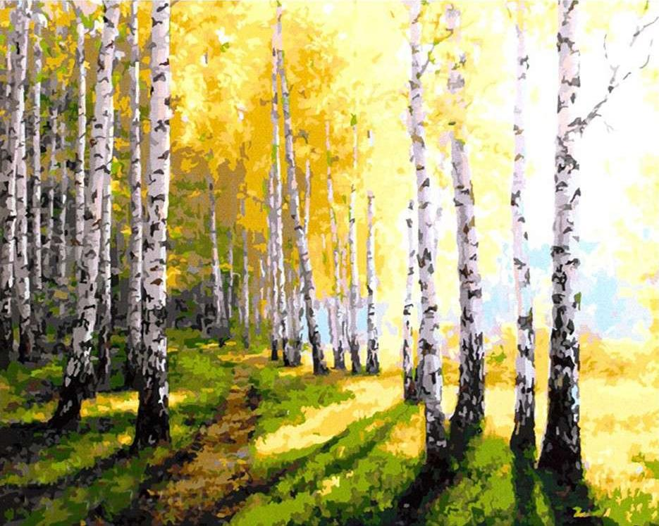 Картина по номерам «Осень в березовой роще» Алика ОлейникаPaintboy (Premium)<br><br><br>Артикул: GX9925<br>Основа: Холст<br>Сложность: средние<br>Размер: 40x50 см<br>Количество цветов: 28<br>Техника рисования: Без смешивания красок