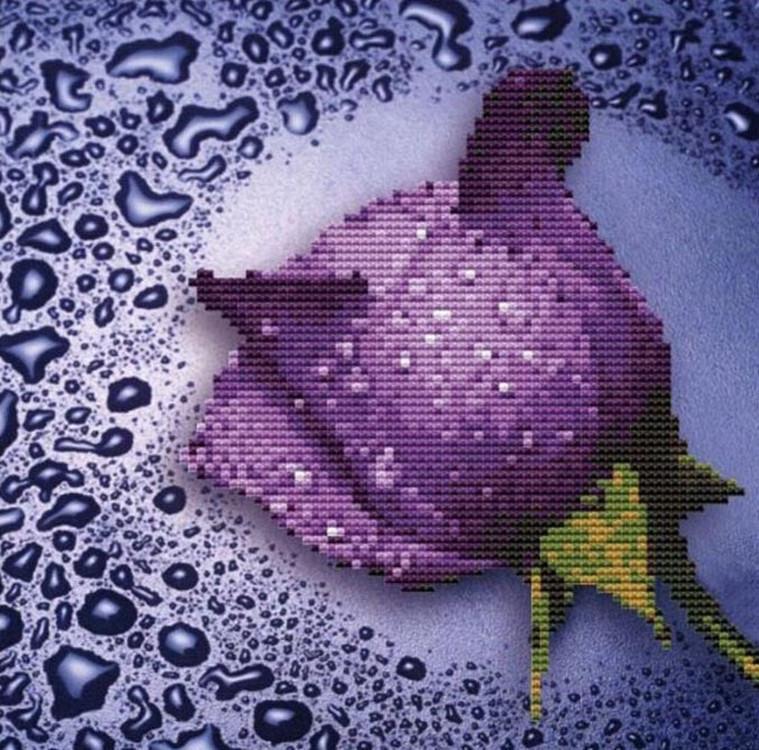 Алмазная вышивка «Сиреневая роза»Алмазная вышивка Color Kit (Колор Кит)<br><br><br>Артикул: 80213<br>Основа: Холст без подрамника<br>Сложность: сложные<br>Размер: 25x25 см<br>Выкладка: Частичная<br>Количество цветов: 14<br>Упаковка: Подарочная коробка-туба