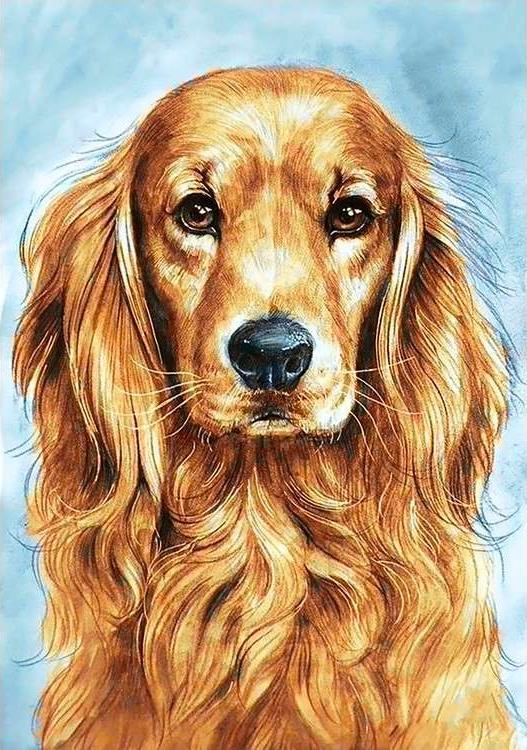 Купить Алмазная вышивка «Преданный пёс», Гранни