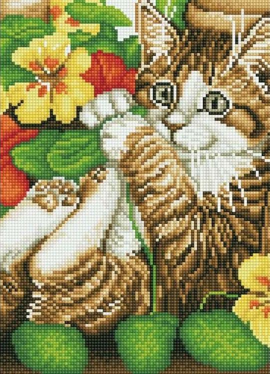 Алмазная вышивка «Игривый котенок»Цветной<br>Обновленная серия алмазной мозаики от бренда Цветной - это яркие популярные сюжеты и расширенная комплектация качественными составляющими. <br><br><br>Особенности алмазной вышивки от Цветной:<br><br>тканевый холст имеет ярко выраженную приятную на ощупь бархатисту...<br><br>Артикул: C206<br>Основа: Холст на подрамнике<br>Сложность: сложные<br>Размер: 30x40 см<br>Выкладка: Полная<br>Количество цветов: 20-35<br>Тип страз: Круглые непрозрачные (акриловые)