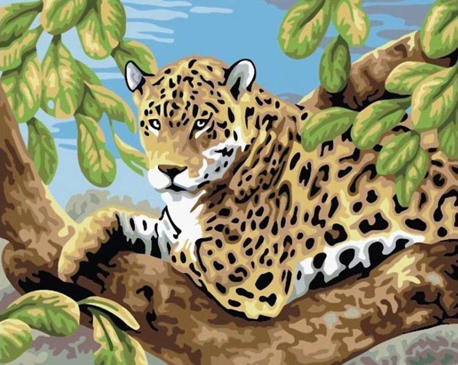 Картина по номерам «Леопард»Paintboy (Premium)<br><br><br>Артикул: E083<br>Основа: Холст<br>Сложность: средние<br>Размер: 30x40 см<br>Количество цветов: 20-25<br>Техника рисования: Без смешивания красок