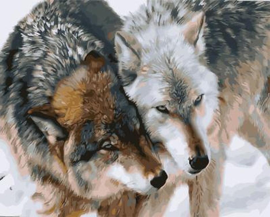 Картина по номерам «Волчья любовь» Карла БрендерсаPaintboy (Premium)<br><br><br>Артикул: GX21068<br>Основа: Холст<br>Сложность: средние<br>Размер: 40x50 см<br>Количество цветов: 24-30<br>Техника рисования: Без смешивания красок