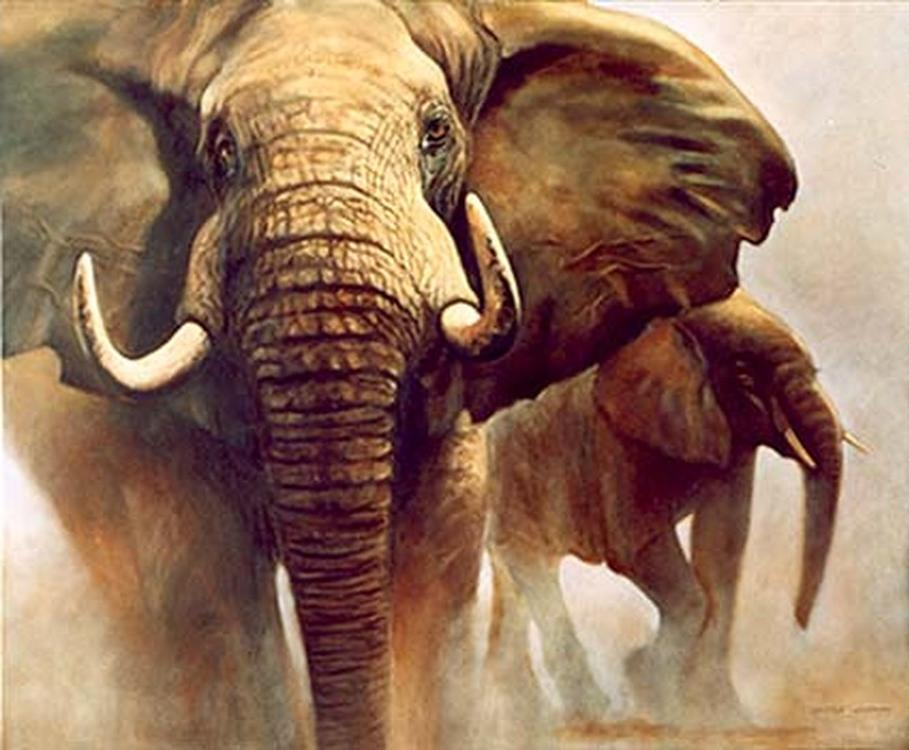 Картина по номерам «Слоны»Раскраски по номерам Paintboy (Original)<br><br><br>Артикул: GX4625_R<br>Основа: Холст<br>Размер: 40x50 см<br>Количество цветов: 24-30<br>Техника рисования: Без смешивания красок