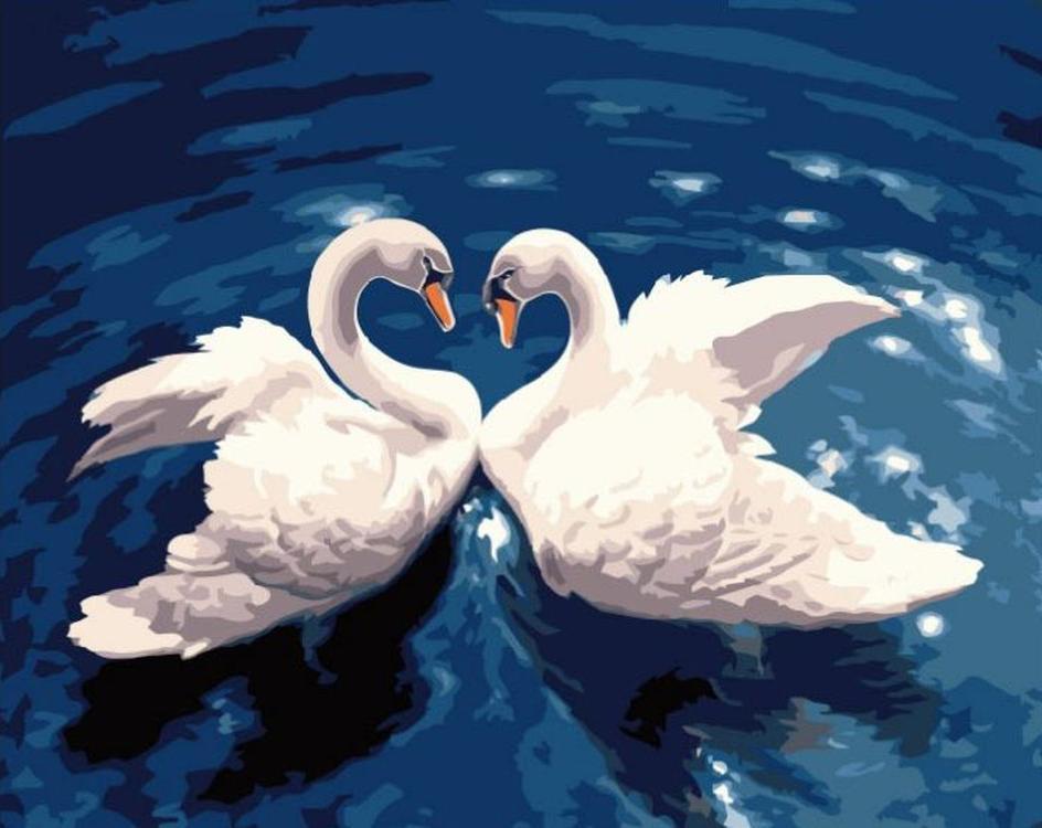 Картина по номерам «Лебеди»Paintboy (Premium)<br><br><br>Артикул: GX7498<br>Основа: Холст<br>Сложность: средние<br>Размер: 40x50 см<br>Количество цветов: 20-25<br>Техника рисования: Без смешивания красок