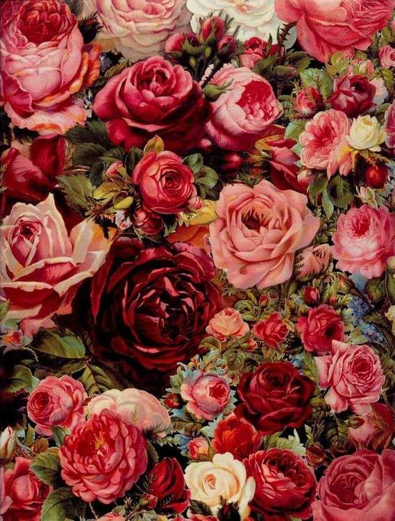 Купить Картина по номерам «Стена из роз», Paintboy (Original)