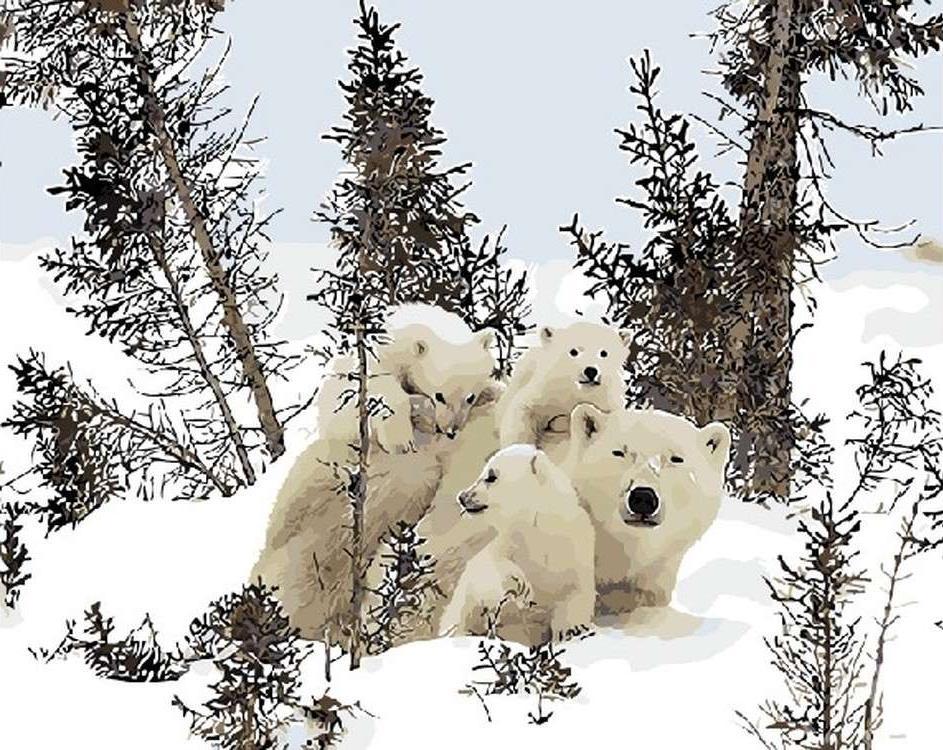 Картина по номерам «Белые медведи»Раскраски по номерам<br><br>