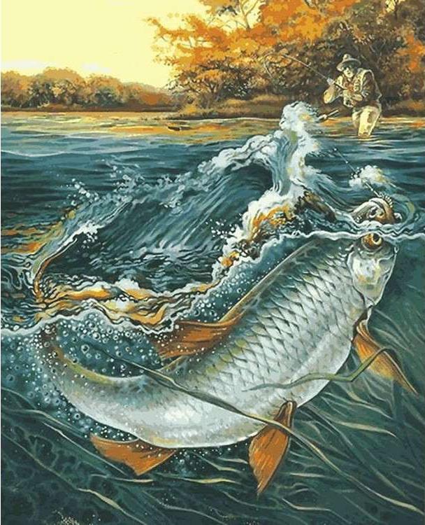 Картина по номерам «Чудо-рыба» Александра ДегтяреваРаскраски по номерам Menglei (Standart)<br><br><br>Артикул: MG6212_S<br>Основа: Холст<br>Сложность: сложные<br>Размер: 40x50 см<br>Количество цветов: 24-30<br>Техника рисования: Без смешивания красок
