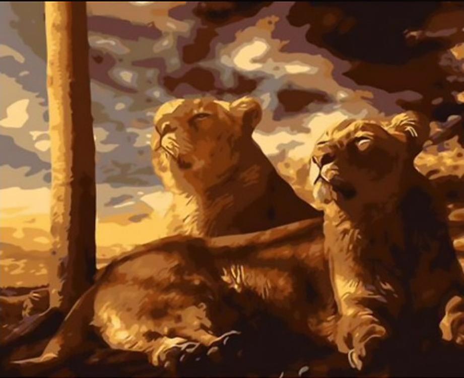 Картина по номерам «Львиное семейство»Paintboy (Premium)<br><br><br>Артикул: Q179<br>Основа: Холст<br>Сложность: средние<br>Размер: 40x50 см<br>Количество цветов: 20-25<br>Техника рисования: Без смешивания красок
