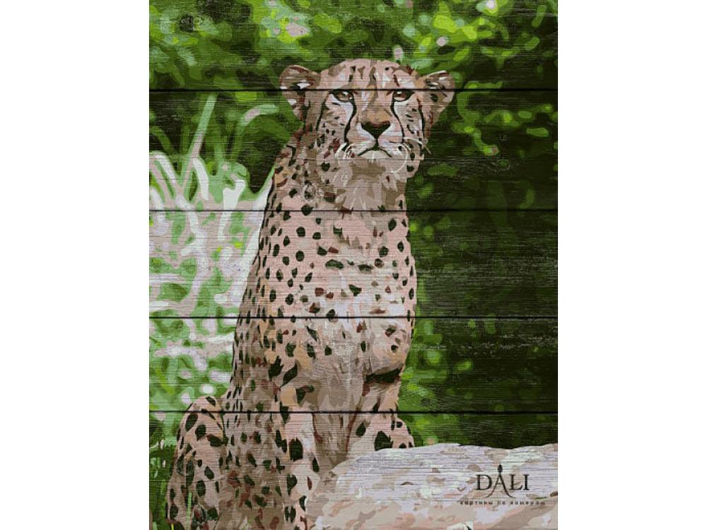Купить Картина по номерам по дереву Dali «Гепард»