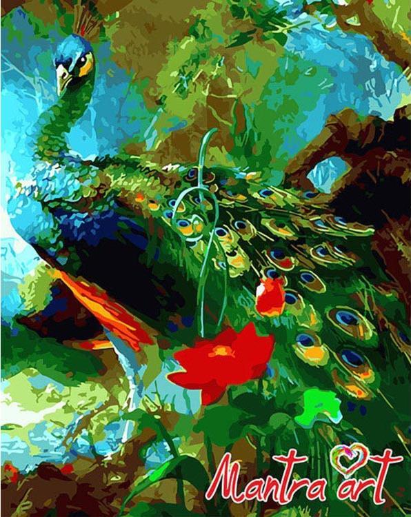 Купить Картина по номерам «Павлин»+в наборе подарок, Mantra Art, Россия