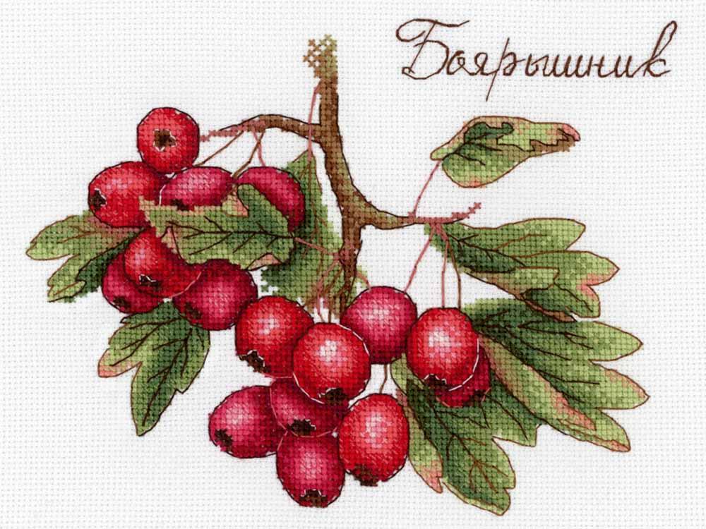 Набор для вышивания «Дары природы. Боярышник»Вышивка крестом<br><br>