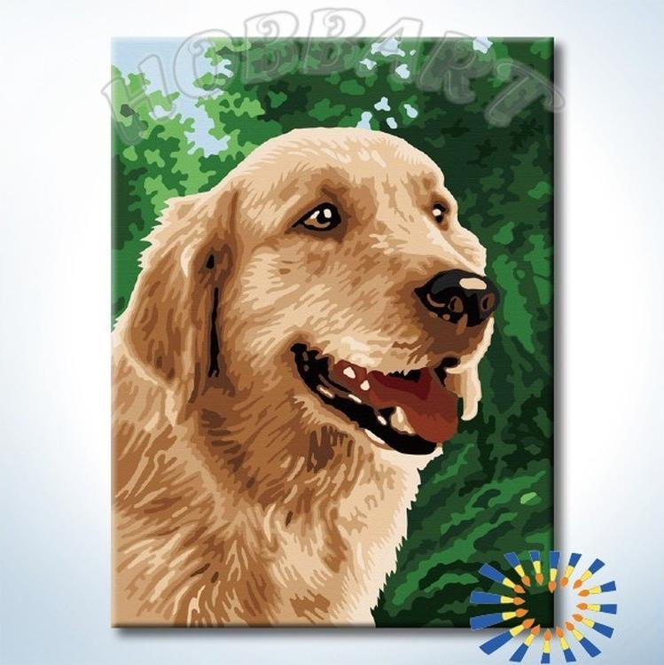 Картина по номерам «Лучший друг»Hobbart<br><br><br>Артикул: HB3040158-Lite<br>Основа: Цветной холст<br>Сложность: сложные<br>Размер: 30x40 см<br>Количество цветов: 18<br>Техника рисования: Без смешивания красок
