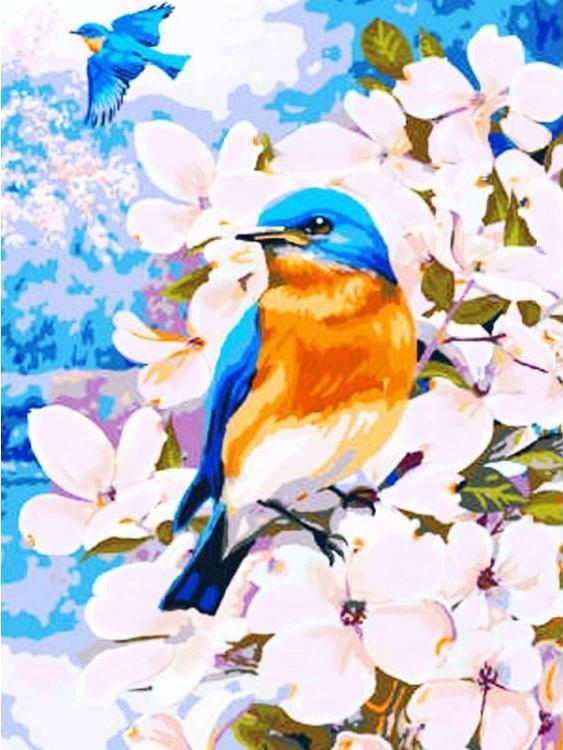Картина по номерам «Полет весны» Грега ДжорданоРаскраски по номерам Color Kit<br><br><br>Артикул: KS027<br>Основа: Картон<br>Сложность: сложные<br>Размер: 30x40 см<br>Количество цветов: 16<br>Техника рисования: Без смешивания красок