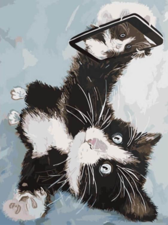 Картина по номерам «Котенок делает селфи» Ирины ЧупринойЦветной (Standart)<br><br><br>Артикул: EX5450_Z<br>Основа: Холст<br>Сложность: средние<br>Размер: 30x40 см<br>Художник: Ирина Чуприна<br>Количество цветов: 21<br>Техника рисования: Без смешивания красок
