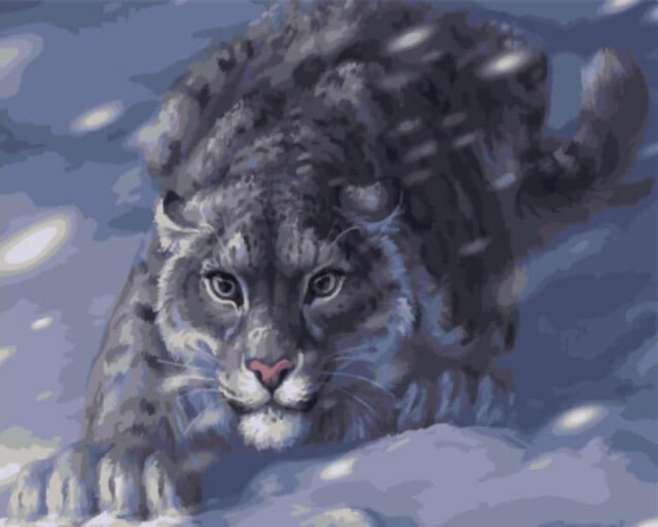 Картина по номерам «Снежный барс на охоте»Цветной (Standart)<br><br><br>Артикул: GX4948_Z<br>Основа: Холст<br>Сложность: средние<br>Размер: 40x50 см<br>Количество цветов: 21<br>Техника рисования: Без смешивания красок