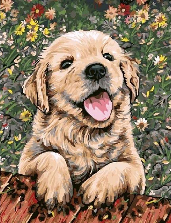 Картина по номерам «Веселый щенок»Раскраски по номерам<br><br>