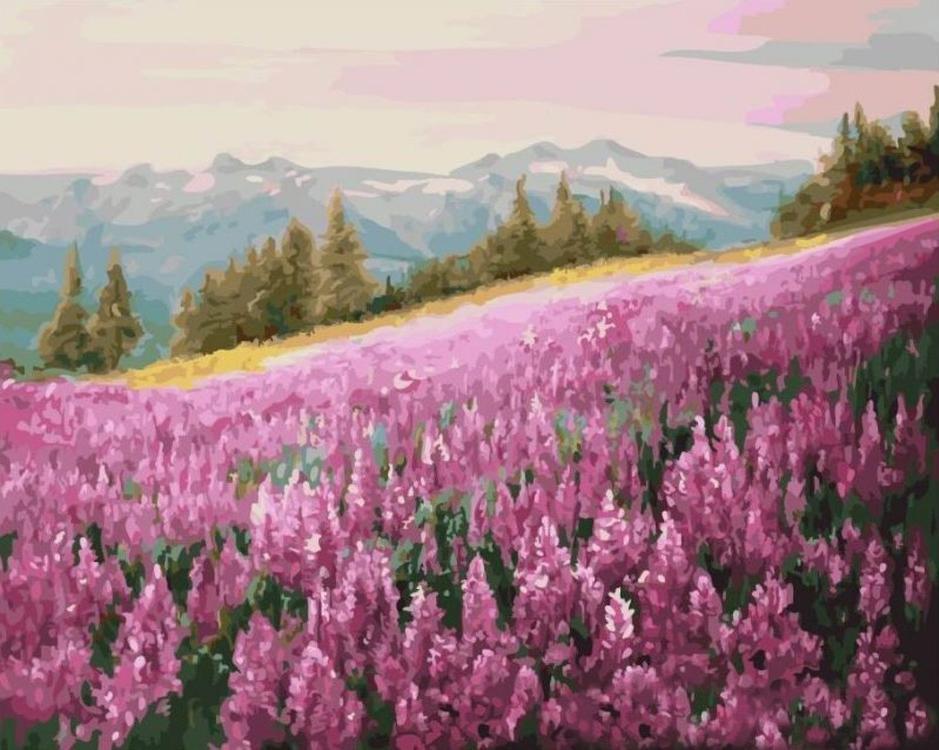 Картина по номерам «Розовое поле»Цветной (Standart)<br><br><br>Артикул: GX5784_Z<br>Основа: Холст<br>Сложность: сложные<br>Размер: 40x50 см<br>Количество цветов: 30<br>Техника рисования: Без смешивания красок