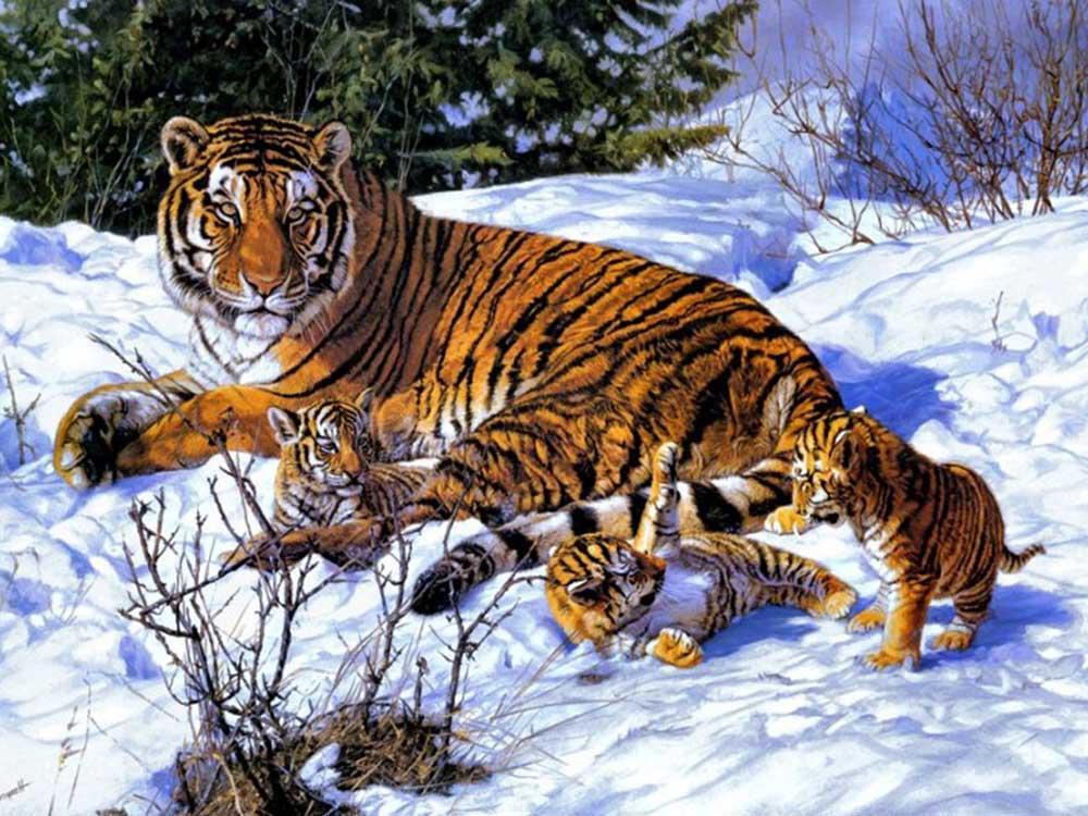 Картина по номерам «Тигрица с детками»Paintboy (Premium)<br><br>