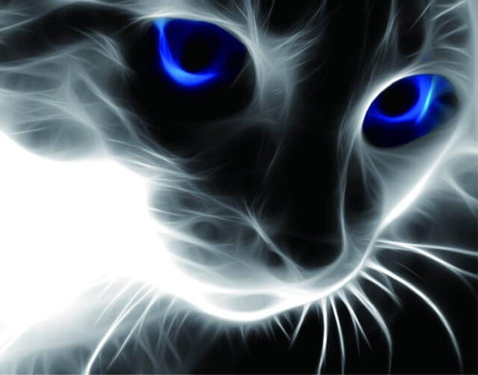 Алмазная вышивка «Синие глаза»Цветной<br>Обновленная серия алмазной мозаики от бренда Цветной - это яркие популярные сюжеты и расширенная комплектация качественными составляющими. <br><br><br>Особенности алмазной вышивки от Цветной:<br><br>тканевый холст имеет ярко выраженную приятную на ощупь бархатисту...<br><br>Артикул: LG016<br>Основа: Холст на подрамнике<br>Сложность: средние<br>Размер: 40x50 см<br>Выкладка: Полная<br>Количество цветов: 12<br>Тип страз: Круглые непрозрачные (акриловые)