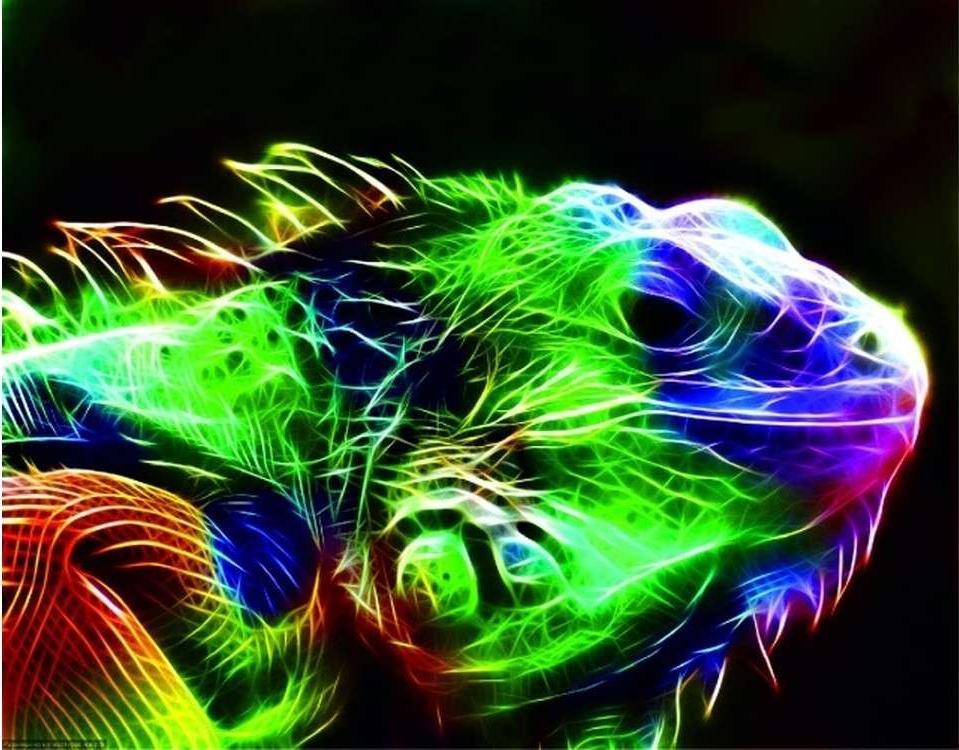 Алмазная вышивка «Игуана»Цветной<br>Обновленная серия алмазной мозаики от бренда Цветной - это яркие популярные сюжеты и расширенная комплектация качественными составляющими. <br><br><br>Особенности алмазной вышивки от Цветной:<br><br>тканевый холст имеет ярко выраженную приятную на ощупь бархатисту...<br><br>Артикул: LG018<br>Основа: Холст на подрамнике<br>Сложность: очень сложные<br>Размер: 40x50 см<br>Выкладка: Полная<br>Количество цветов: 38<br>Тип страз: Круглые непрозрачные (акриловые)