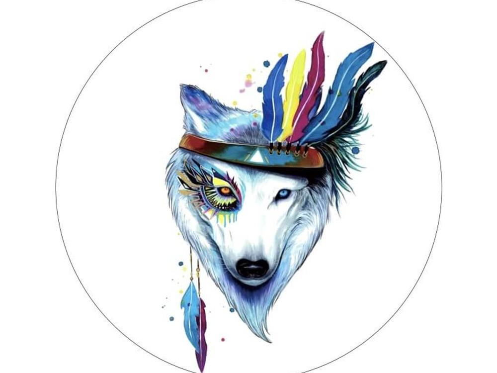 Набор для вышивания «Собака-индеец»Вышивка крестом Цветной<br><br>