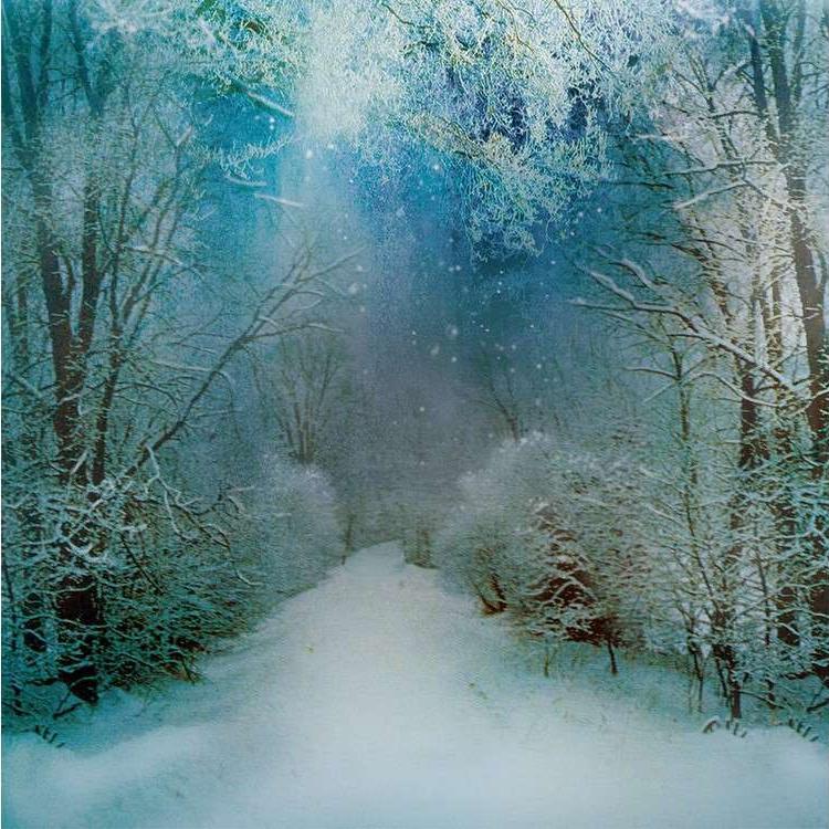 Алмазная вышивка «Снежный путь»Яркие Грани<br><br><br>Артикул: DS442<br>Основа: Холст без подрамника<br>Сложность: очень сложные<br>Размер: 50x50 см<br>Выкладка: Полная<br>Количество цветов: 56<br>Тип страз: Квадратные