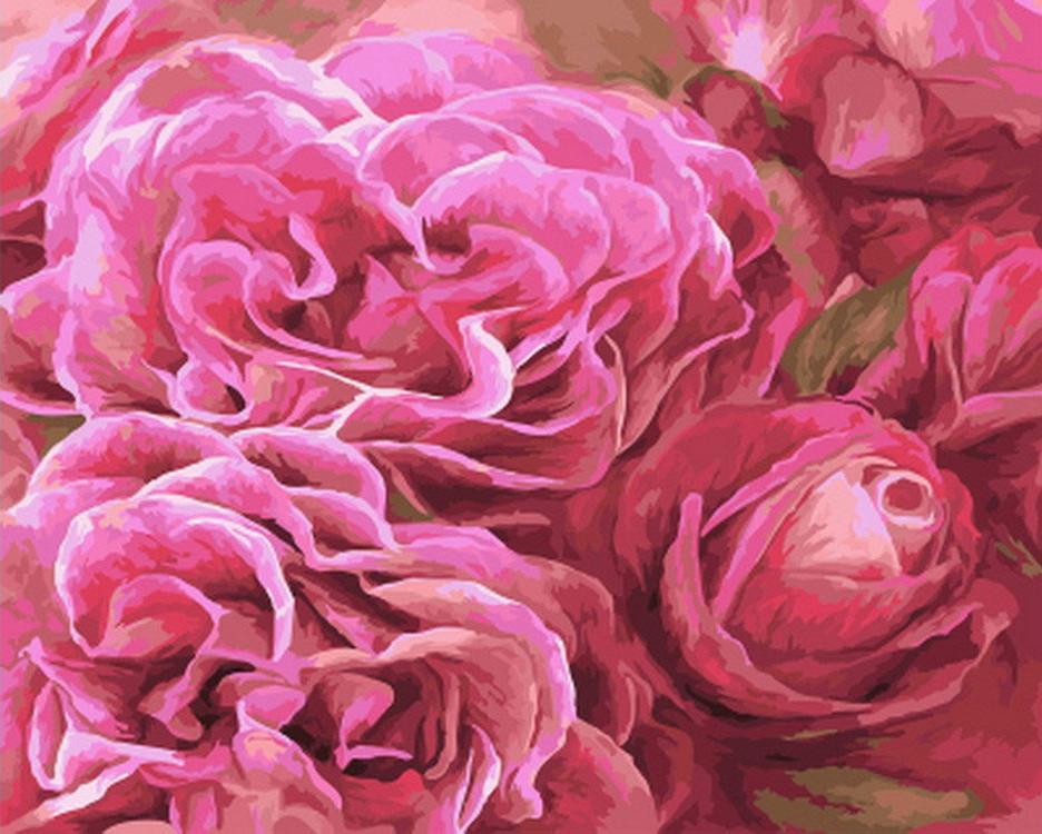 Картина по номерам «Розовое совершенство» Кэрол КаваларисPaintboy (Premium)<br><br><br>Артикул: GX22043<br>Основа: Холст<br>Сложность: средние<br>Размер: 40x50 см<br>Количество цветов: 24<br>Техника рисования: Без смешивания красок