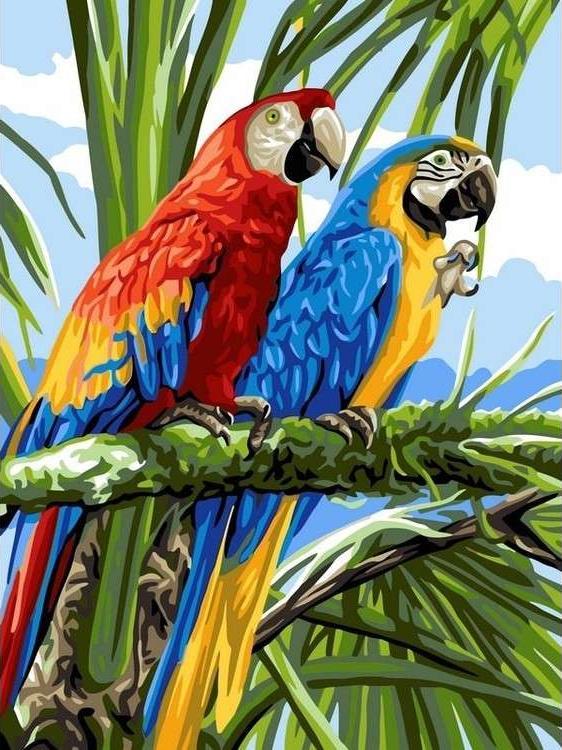 Картина по номерам «Попугаи ара»Paintboy (Premium)<br><br><br>Артикул: GX22339<br>Основа: Холст<br>Сложность: средние<br>Размер: 40x50 см<br>Количество цветов: 23<br>Техника рисования: Без смешивания красок