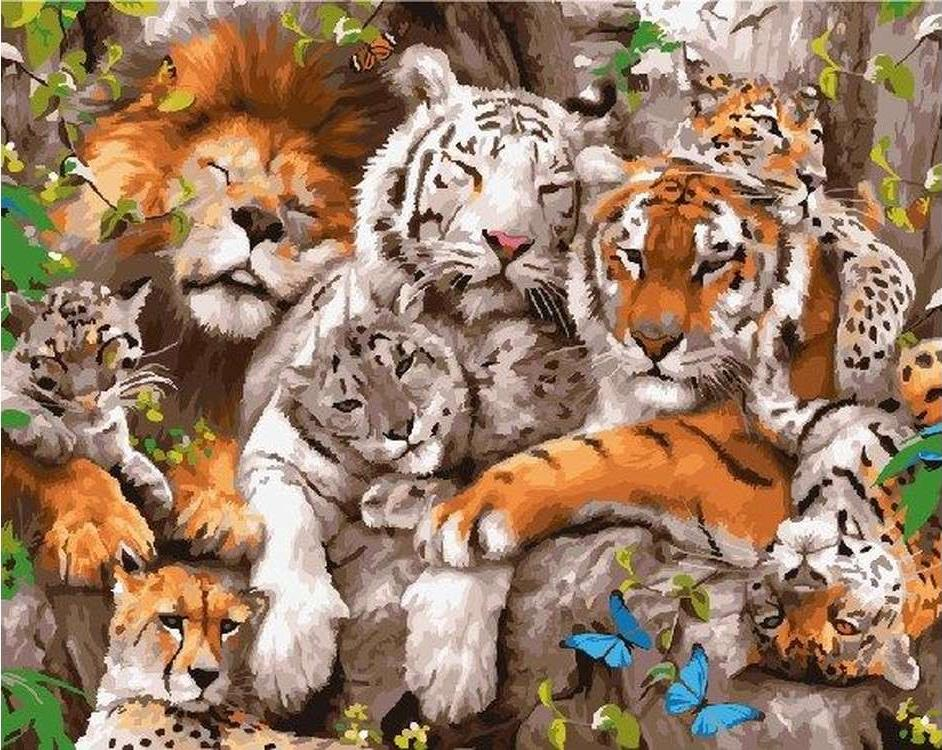 Картина по номерам «Дикие кошки»Paintboy (Premium)<br><br><br>Артикул: GX5188<br>Основа: Холст<br>Сложность: средние<br>Размер: 40x50 см<br>Количество цветов: 26<br>Техника рисования: Без смешивания красок